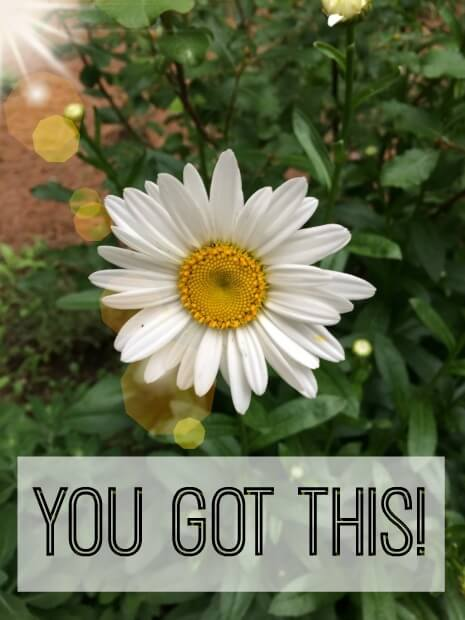 A daisy with quote.