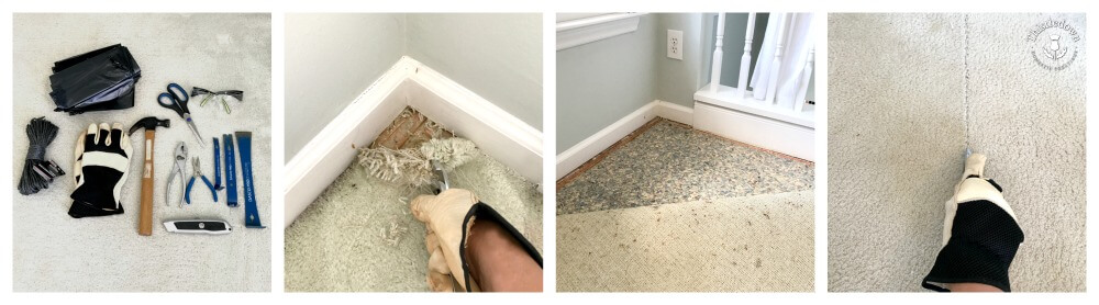 Pulling up the carpet to expose the subfloor
